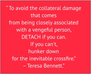 "red box with white text: "" To avoid the collateral damage that comes from being closely associated with a vengeful person, DETACH if you can. If you can't, hunker down for the inevitable cross-fire."" – Teresa Bennett"